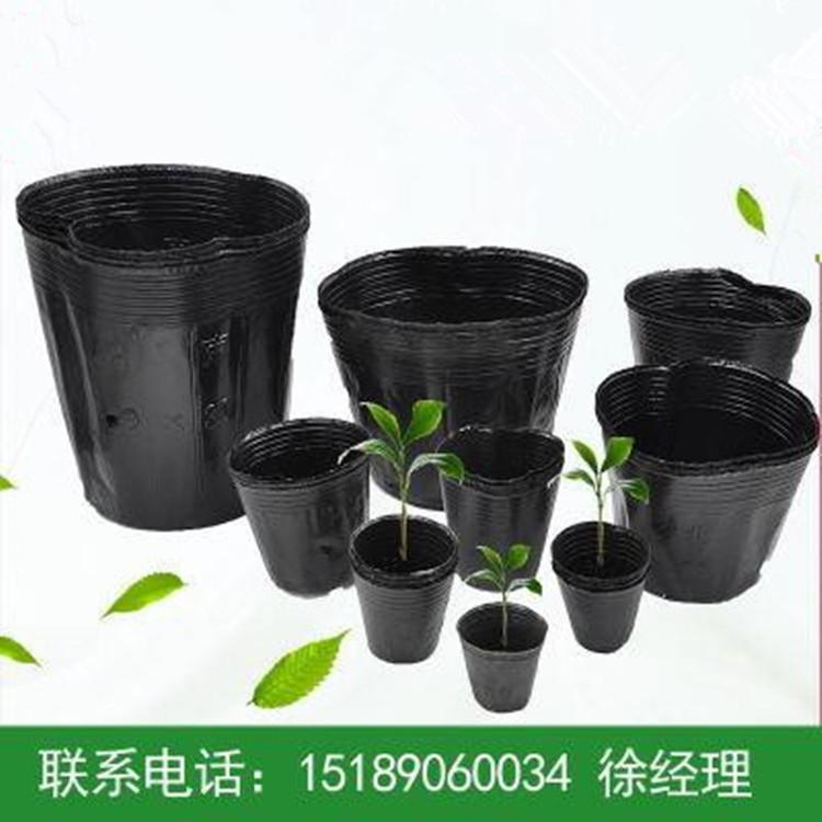 厂家直销营养钵批发加厚黑色塑料育苗袋优质营养杯育苗盆育苗杯