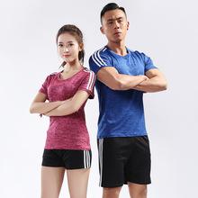 2018正品排球服男套装短袖速干比赛服女款气排球训练队服团购