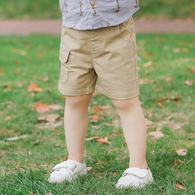 本比小熊代发2018夏日新品韩版中小童宝宝纯棉短裤休闲百搭童裤潮
