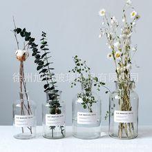 北欧ins风玻璃花瓶家居装饰摆件 广口试剂花瓶花器 简约插干花瓶