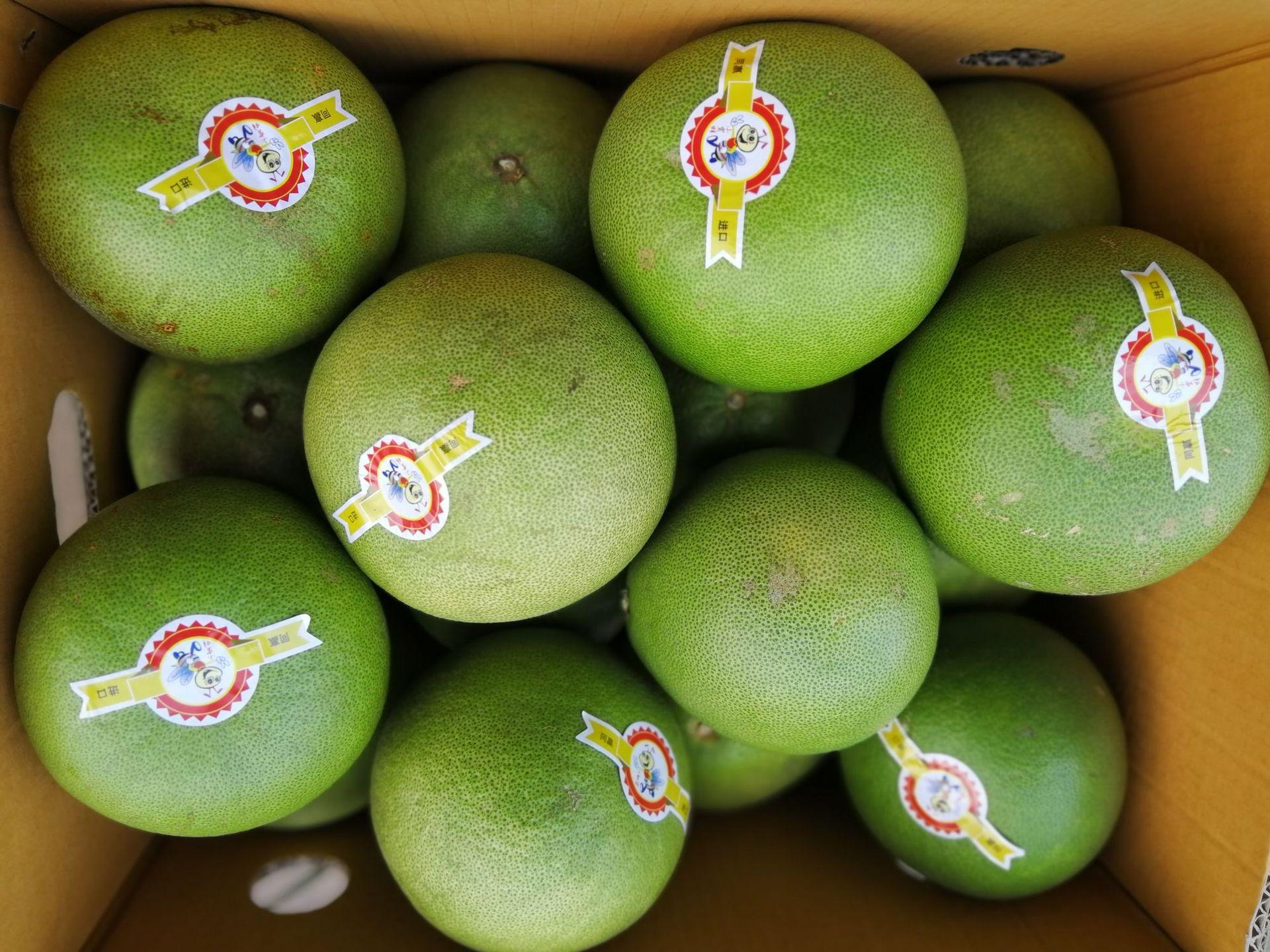 泰国青蜜柚白肉柚子新鲜白心蜜柚当季柚子青柚水蜜柚微商一件代发