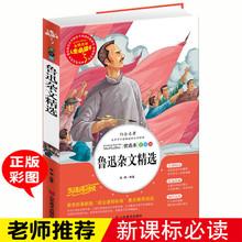 正版儿童书籍人生必读书《鲁迅杂文精选》世界经典名著小学生课外