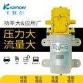 微型隔膜泵 农用电动喷雾器小型抽水泵12v高压洗车泵自吸泵 益泵