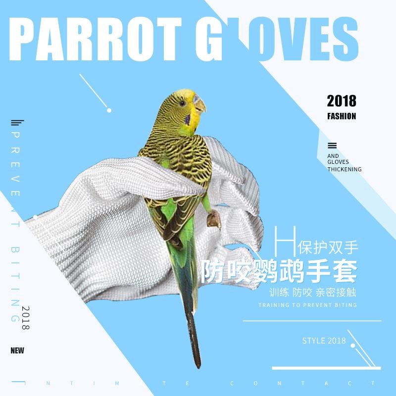 鹦鹉防咬手套宠物抓鸟虎皮小太阳放飞鹦鹉训练钢丝手套鸟配件用品