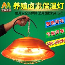 养殖场保温灯卤素养殖取暖灯节能可调温度育雏加热灯养殖设备用品
