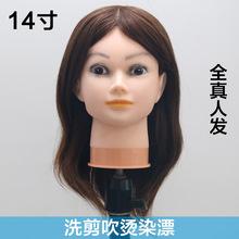 理发店假人头模特头模 可烫染真发头模 全真发学剪发的头模美发