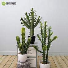 【琪浩】高档仿真植物  热带植物盆栽  店铺橱窗软装饰品 办公室