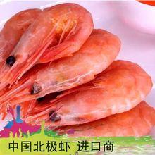 经销批发野生籽虾 甜虾 北极虾 批发加拿大北极甜虾冰虾腹籽
