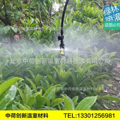 和记下载雾喷系统高压雾喷地埋式自动旋转喷头大棚微喷喷雾喷头
