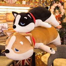 创意新款柴犬公仔毛绒玩可爱趴狗布娃娃抱枕女生生日礼物一件代发