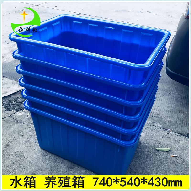 供应云南 湖南塑料水箱 养龟箱 养鱼箱  服装周转箱