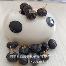 дикие ягоды из плодовитого дерева