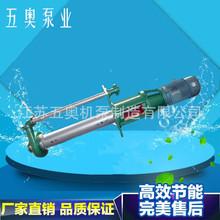 65LJYA不锈钢料浆泵 磷酸磷铵黄磷硫磺液下泵 904L CD4MCU