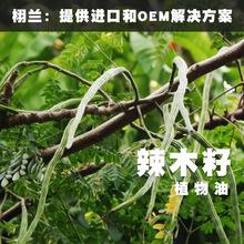 栩兰 美国进口 冷压辣木籽油 Moringa oleifera 单方植物油