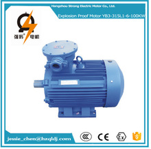185kw 4 Poles 3 phase induction totally enclosed fan cooling