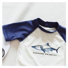 Boy's split three-piece suit Children's swimsuit suit Cartoon shark baby split boy swimsuit