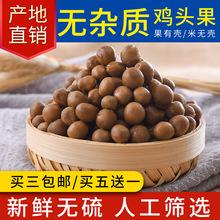 厂家直销2019新品天长龙岗特产新鲜鸡头果三黄一级鸡头果鸡头米