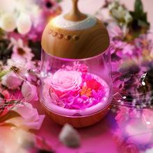 批发我的秘密花园 永生花创意七彩小夜灯蓝牙音箱七夕情人节礼品