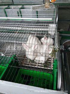 宠物兔笼价格_笼子图片_笼子图片大全 - 阿里巴巴海量精选高清图片