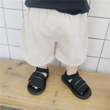 夏季新款童装韩版男童薄款灯芯绒短裤中小童纯色童裤女童夏款童裤