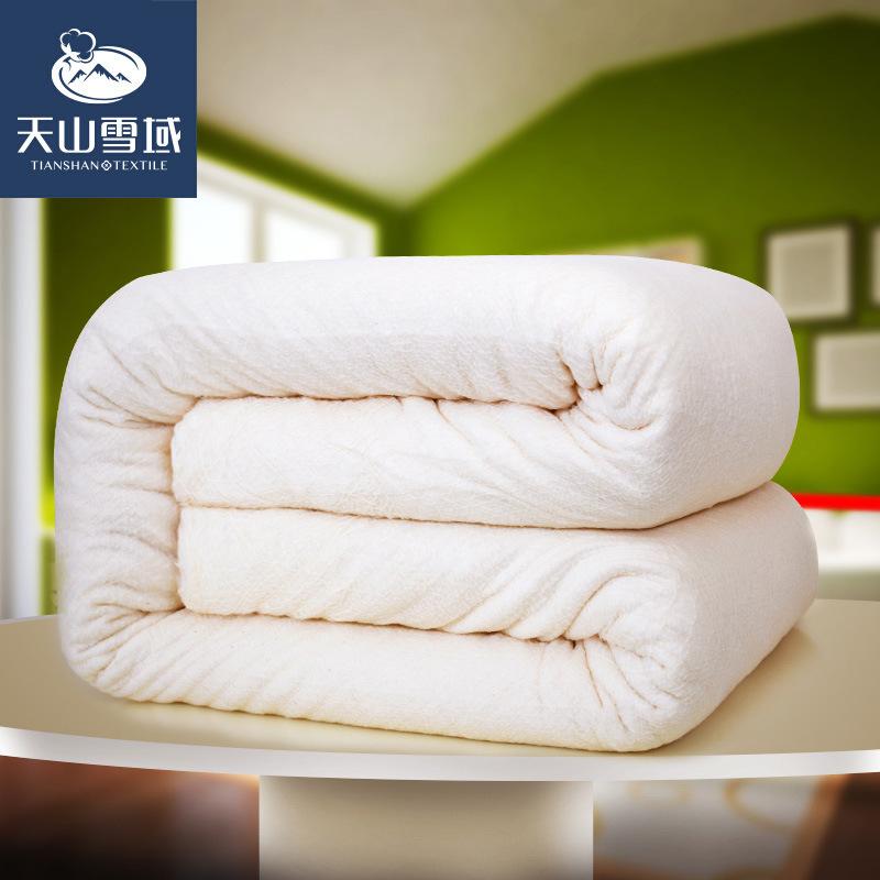天山雪域精梳棉有网棉胎棉花被子新疆棉被芯春秋被夏被