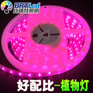 Recommended plant lights, plant auxiliary lighting strips, plant growth lights, plant fill lights, led plant lights