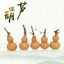 一手种植货源美国手捻葫芦 把玩葫芦 带龙头迷你小葫芦带龙头摆件