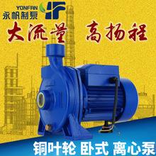 循环加压水泵 IQ750W增压泵 自来水水池加压抽水泵 家用水泵 直销