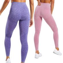 跨境热卖欧美鲨鱼裤瑜伽裤女新款打底裤无缝提臀高腰紧身运动裤