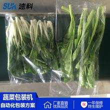 【枕式全自動】蔬菜水果包裝袋可打孔包裝機 保鮮膜氣調包裝機