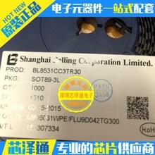 芯泽通 BL8531CC3TR30 SOT89-3 移动电源升压DC/DC 全新原装