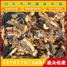 全国统一售价枣木劈柴-烤鸭劈柴-烤鸭枣木劈柴 热销产品果木劈柴