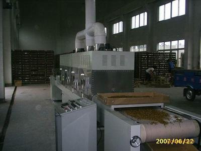 黄粉虫微波烘干机 黄粉虫专用设备200公斤/时 高效快速烘干质量好