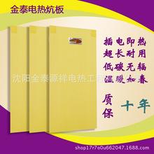 廠家直銷汗蒸房電熱板無輻射韓國電熱板電熱炕板批發招代理