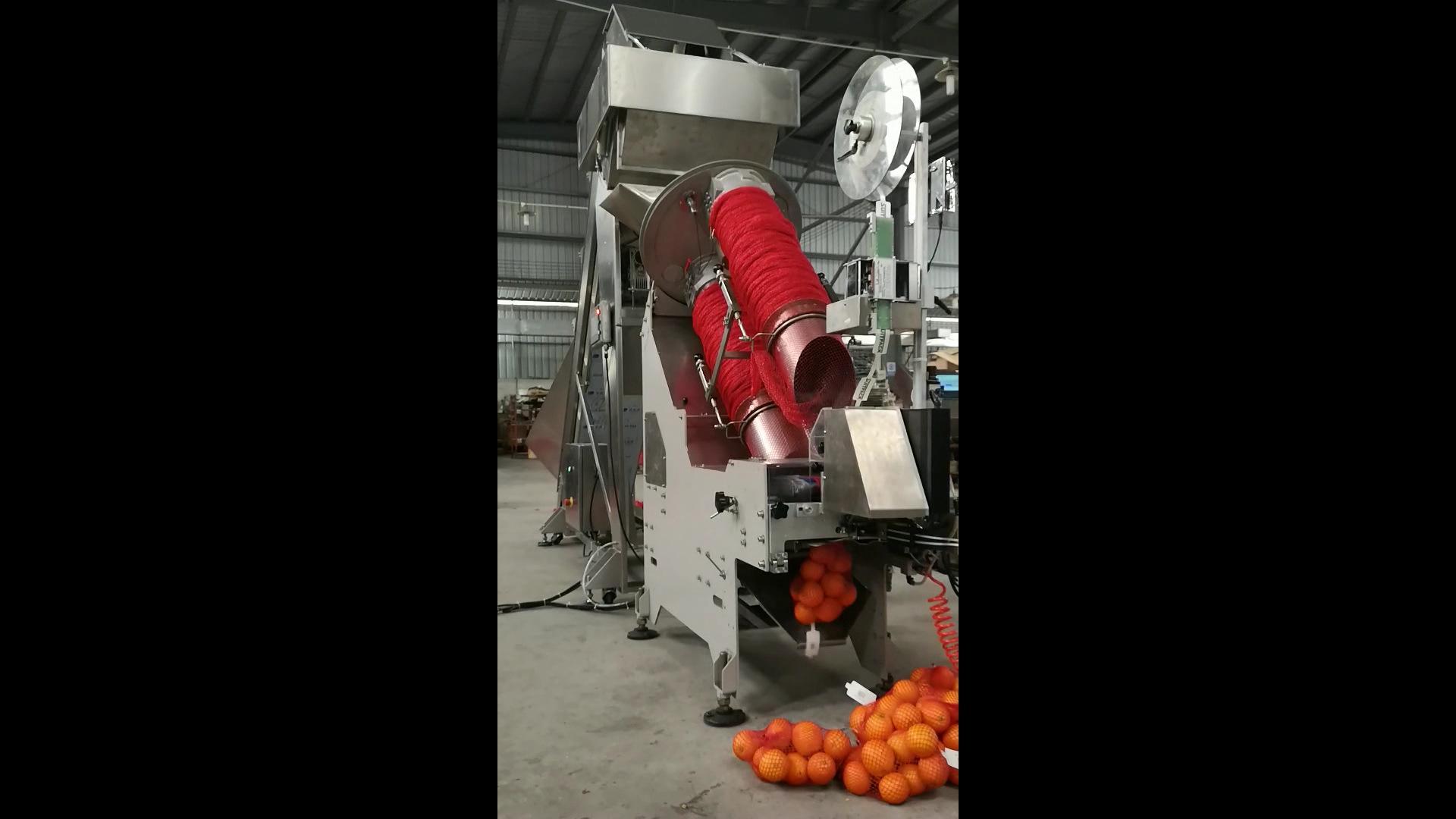 供应定量给料皮带秤AD-50-01 橙子网袋包装机系统