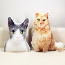 订做宠物PP棉玩偶来图异形猫狗毛绒玩具卡通动物定制PP棉猫咪礼物