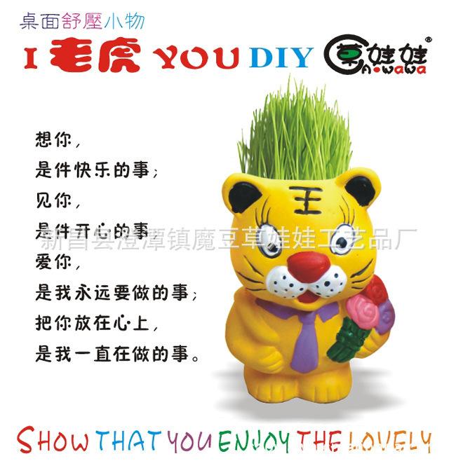 种植绿植陶瓷盆栽盆景草娃娃 I老虎YOU草娃娃陶瓷植物盆栽