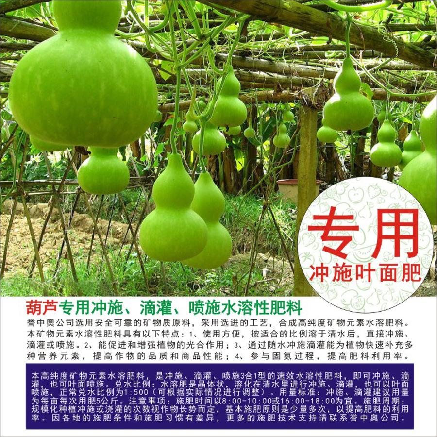 冲施肥料-葫芦