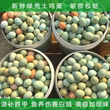 网店代理初生农家土鸡蛋绿壳乌鸡蛋批发支持1件代发,厂家直销