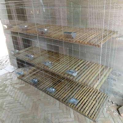 河北安平鑫润 子母兔笼 商品兔笼 新型兔笼 镀锌工艺 量大从优