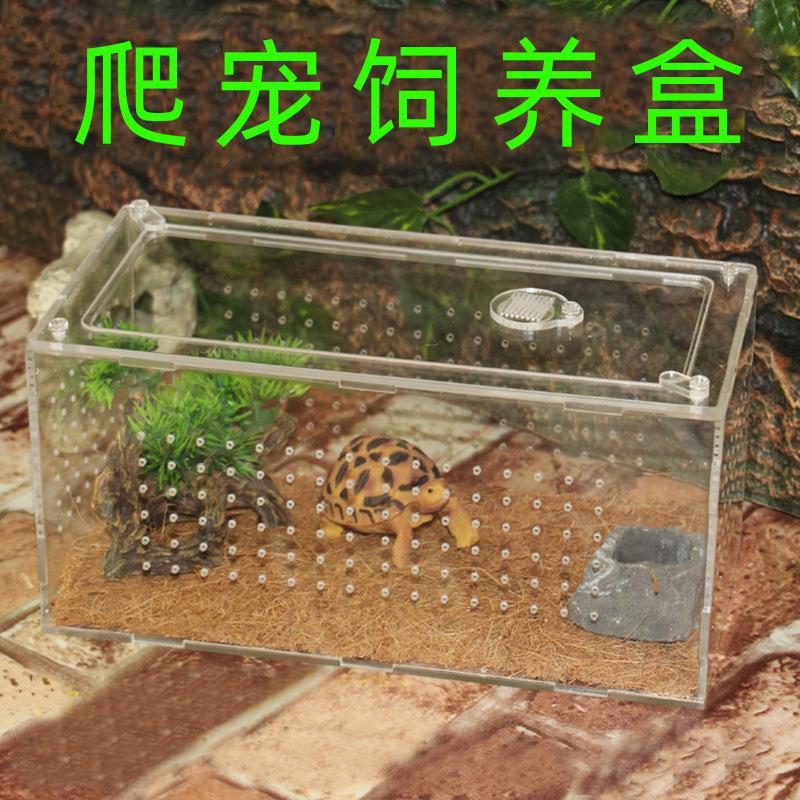 爬虫饲养盒爬宠饲养箱蜘蛛角蛙守宫盒蜥蜴宠物蛇蝎子昆虫食盆水盆