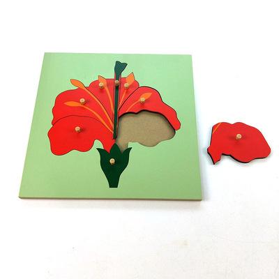 恩赐 蒙特梭利教具 拼图 动物植物昆虫生物教育木制益智玩具