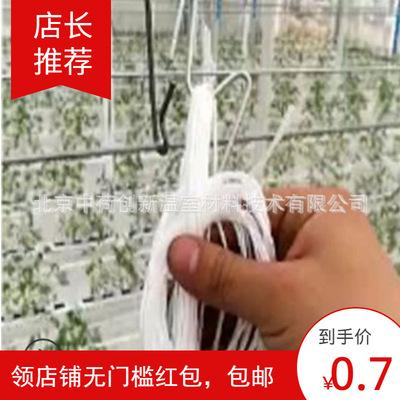 【专业厂家】和记下载大棚西红柿挂钩【直销】番茄挂钩 和记下载栽培  M钩
