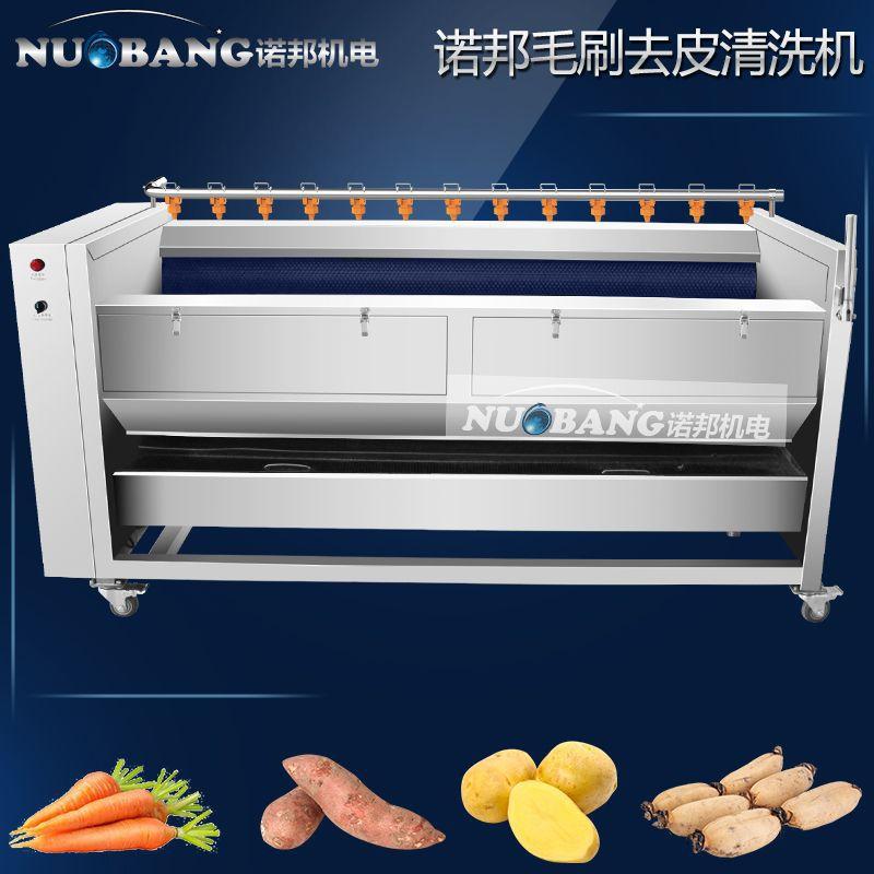 厂家销售桔梗喷淋清洗机 商用葛根毛滚刷式自动去皮清洗机