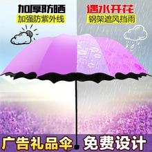 遇水开花伞晴雨伞创意折叠遮阳伞防晒太阳伞礼品广告雨伞定制logo