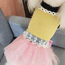 寵物狗狗裙子秋冬裝約克夏泰迪比熊高彈毛衣公主裙兩件套蓬蓬裙