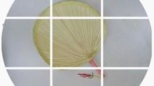小蒲扇幼兒一級扇 小棕櫚扇子兒童舞蹈蒲扇子蒲扇小號 10個包郵