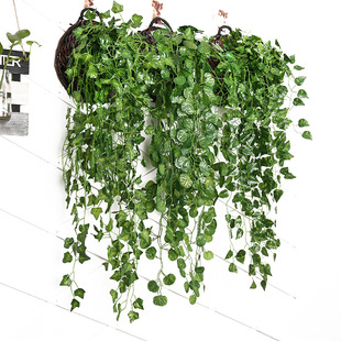 Artificial green radish wall hanging, creeper vine, artificial plant hanging basket, background wall decoration, artificial ivy wall hanging