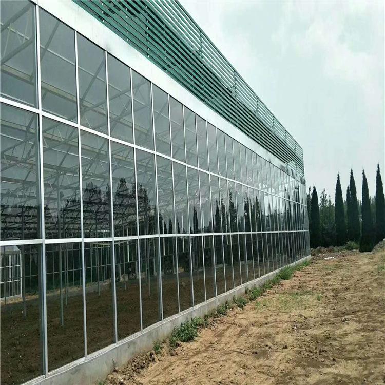 丹东养殖温室玻璃大棚行情 连栋大棚造价 供应玻璃温室报价