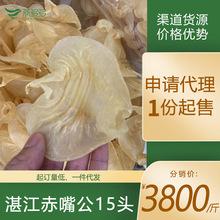 燕多多 大口赤嘴鳘鱼胶花胶 湛江赤嘴胶15头 产地货源 一件批发